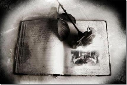gothic-art-book-black-rose-sm