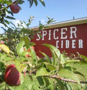spicer-mill