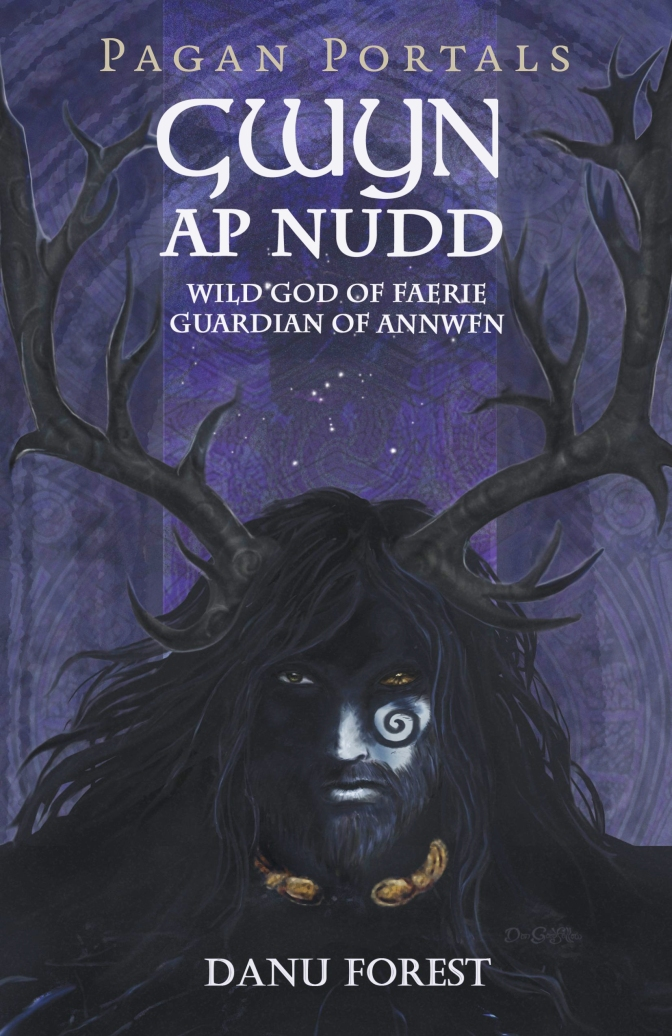 Gwyn Ap Nudd by Danu Forest