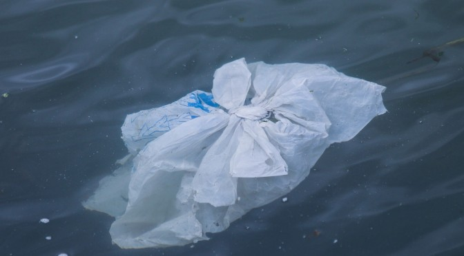 Plastic-free Whitstable: by Steve Andrews